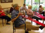 Se necesita Terapeuta Ocupacional con discapacidad en Boadilla del Monte